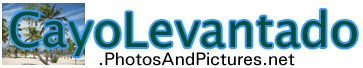 cayo levantado pictures and photos site banner