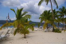 Palm trees and white sand of Cayo Levantado.jpg