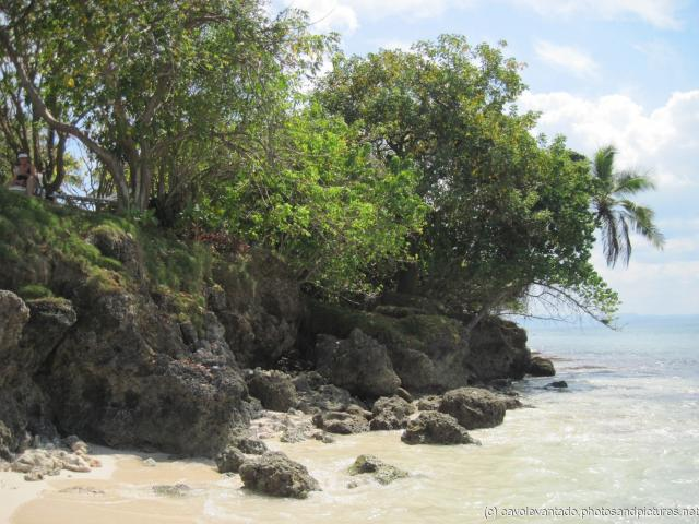 Rocks and trees at one end of Cayo Levantado.jpg