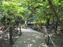 Walkway to the restrooms at Cayo Levantado.jpg
