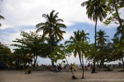 Trees and beachgoers at Cayo Levantado.jpg