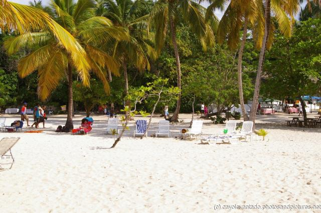 Cayo Levantado beach view from water side.jpg