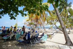 Beach chairs and palm trees at Cayo Levantado.jpg