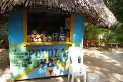 Cayo Levantado Popola Bar and Fresh Pinapples.jpg