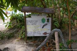 Fish in coconut sauce and other dishes on sign at Cayo Levantado.jpg